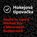 Hokejov tipovaka